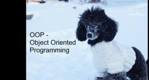 dog-poodle-snow-sweater-pe<wbr />t-413141