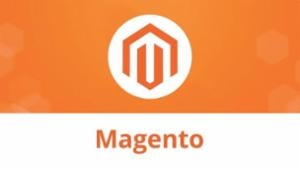 Assess the Working of Your Magento Website -