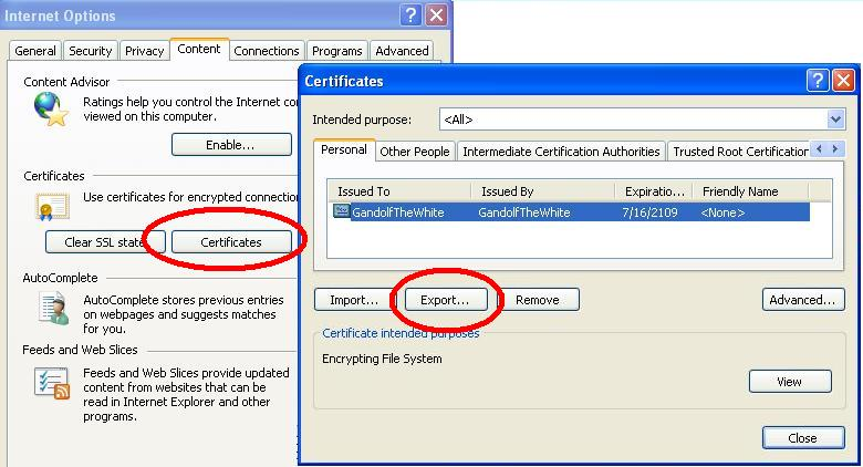 Export your private-key certificate