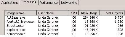 How can I automatically flush out GDI objects?