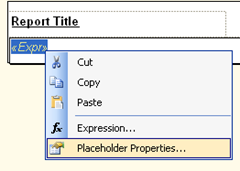 Textbox with expression converted to BIDS 2008