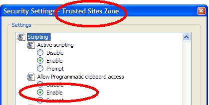 Allow clipboard access at trusted sites.