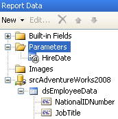 Report Data pane - Parameters