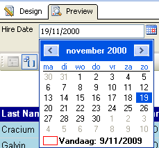 Calendar control for a datetime report parameter