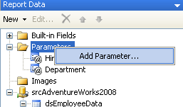 Report Data pane - Add Parameter
