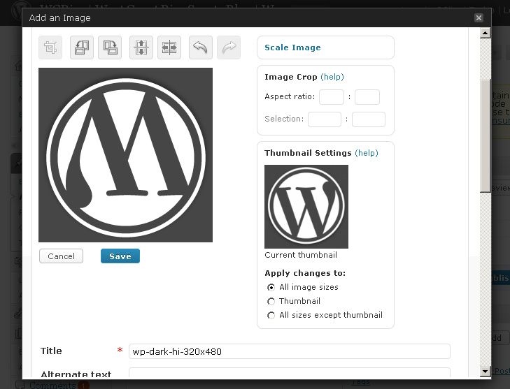 WordPress 2.9 Image Editor