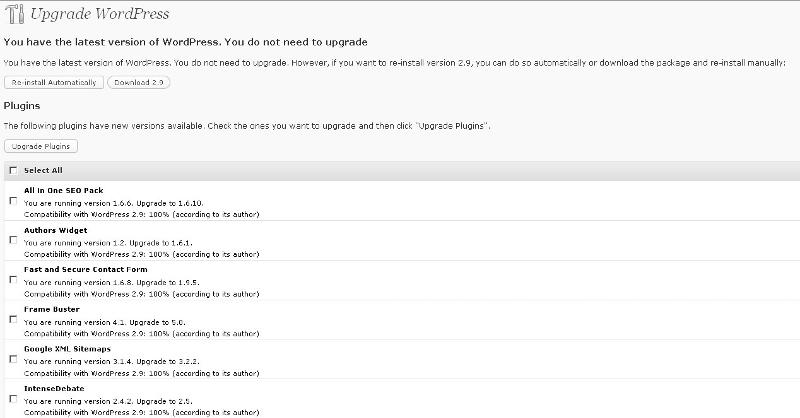 WordPress 2.9 Plugin Updgrade