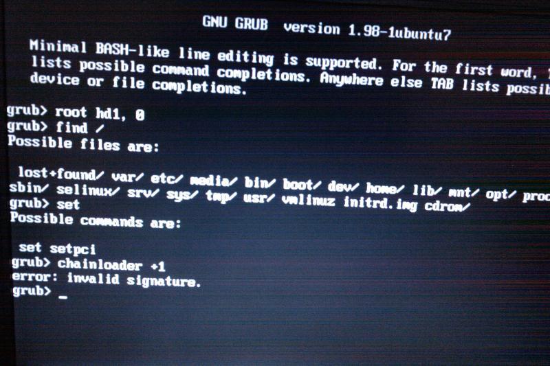 Try to boot from Ubuntu using grub