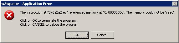 w3wp.exe error message