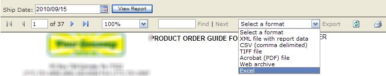 SSRS Export to Excel Error Through IIS 7 5