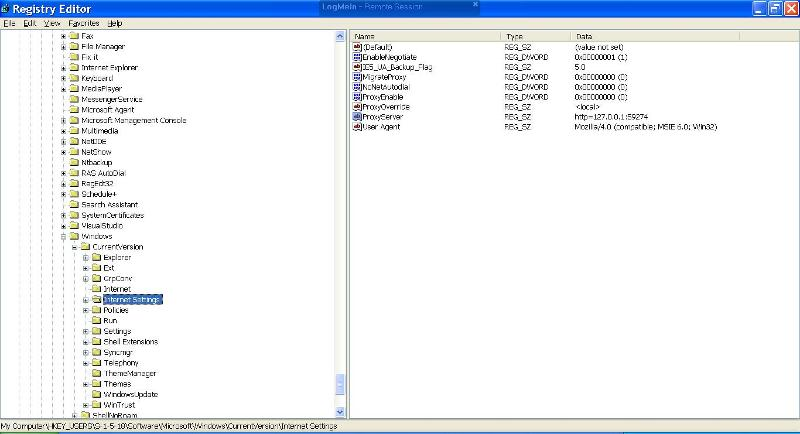 1 reg key before cleaning with hitman - see the proxy server entry?