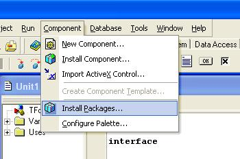 How to use MS Access database in Delphi