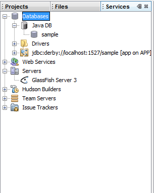 Services in NetBeans