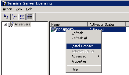 Install Licenses