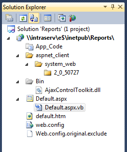 My Solution Explorer window with Reports project open