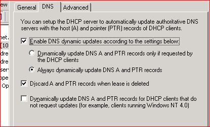 DNS Settings for DHCP Server.