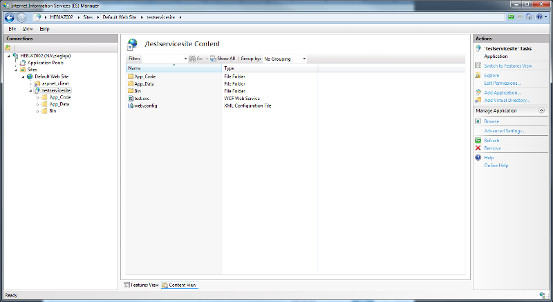 Screen shot of IIS