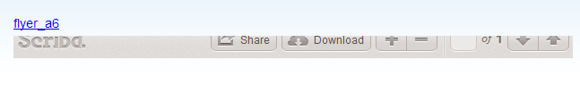 Embed Scribd ie8 bug on loading. Height not ajusted