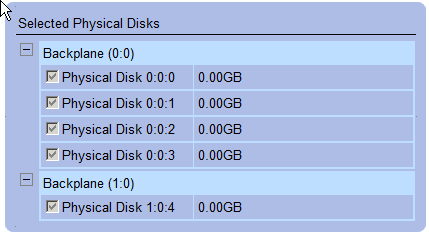 Physical Disks and Backplane in RAID5