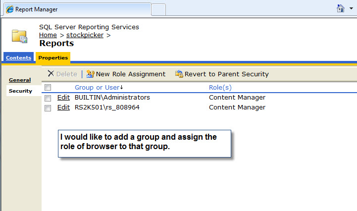 SSRS Security Page