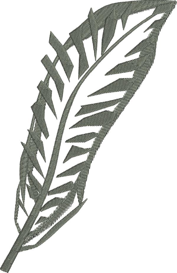Black & White Feather