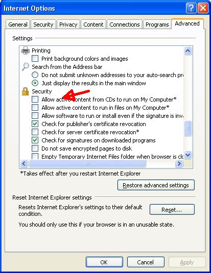 ie8 security options,