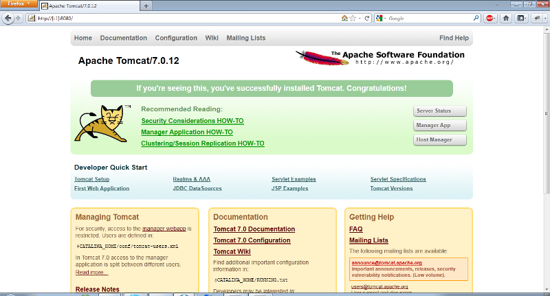 Screenshot of working IPv6 website using Tomcat 7
