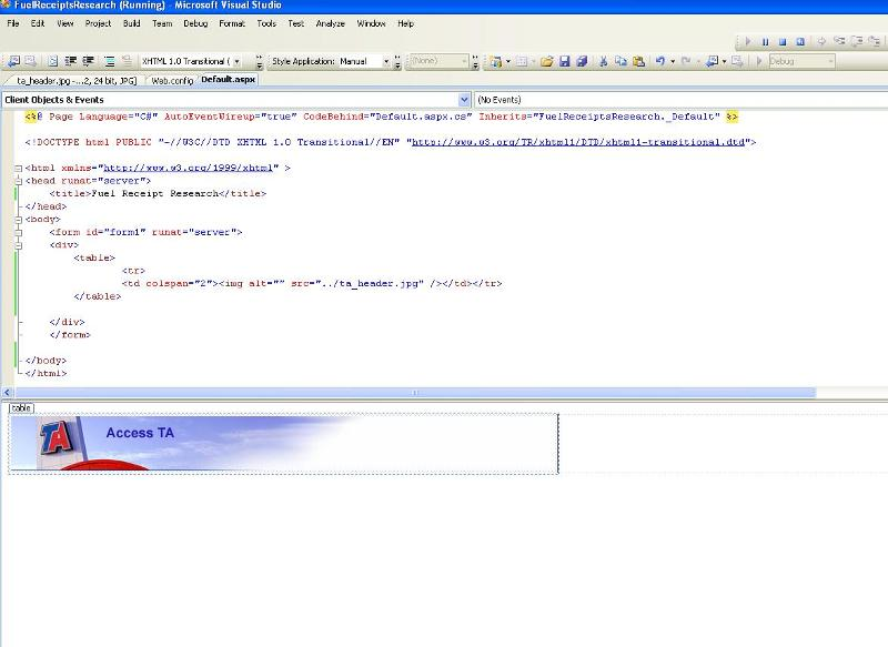 Run Time View of VS 2008 Environment