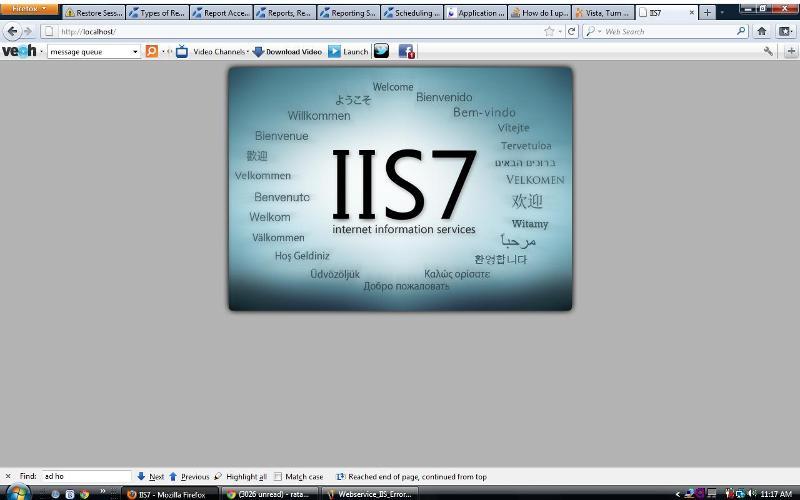 IIS& Works