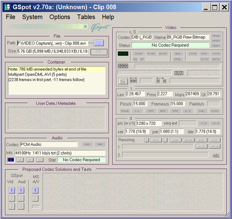 Gspot screen analyzing the AVI file in question