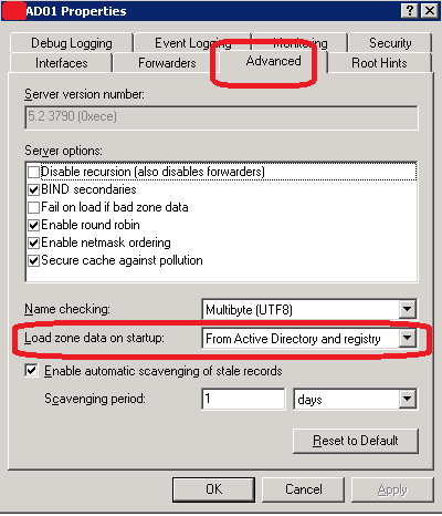 Server DNS Properties
