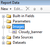 The Images node in the Report Data pane shows all embedded images