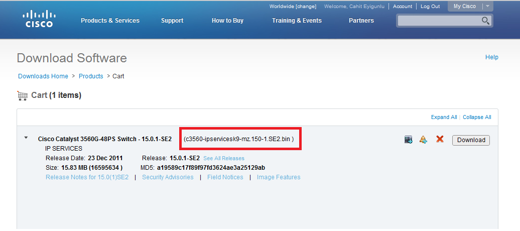Cisco 3560 BGP Support