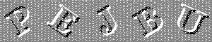 A grayscale CAPTCHA image
