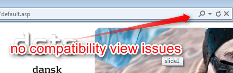 No compatibility view issues?