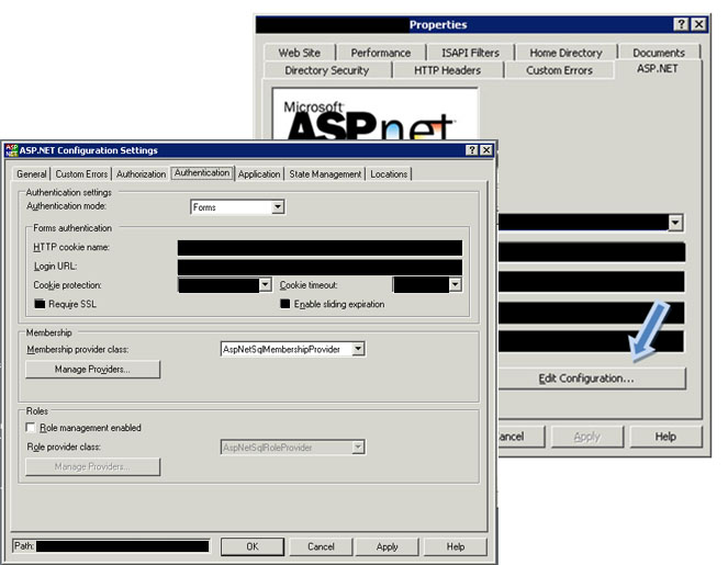 IIS Web Site Properties and ASP.NET Settings