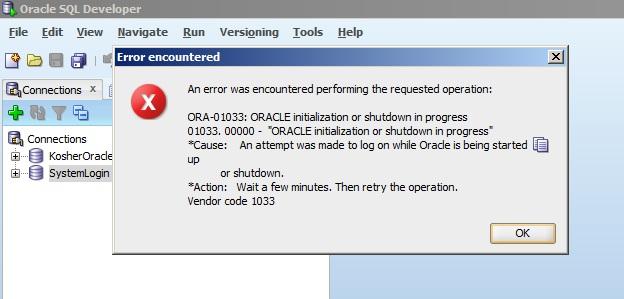 SQL Developer Error