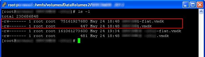 LS on ESX server