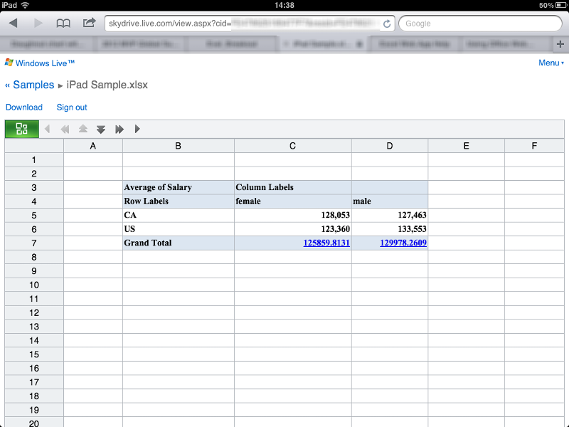 iPad standard Skydrive with Excel
