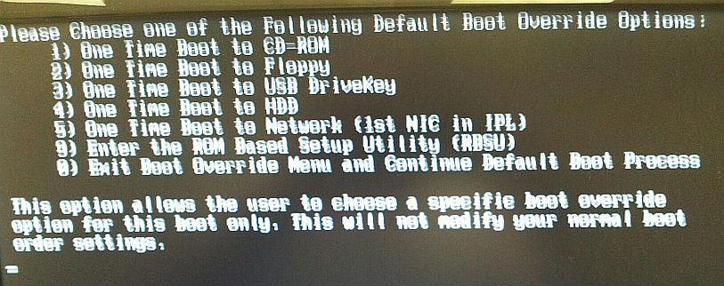 HP Proliant Server will not boot from hard drive