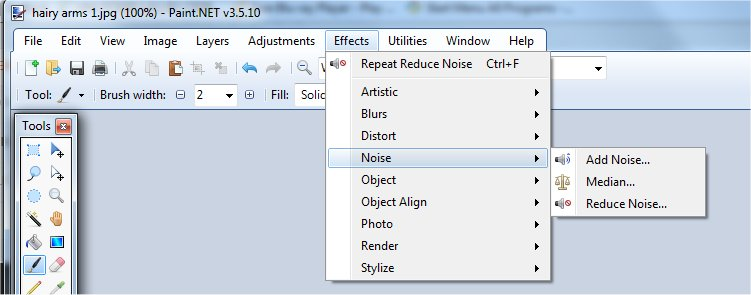 Reduce Noise Filter in Paint dot net