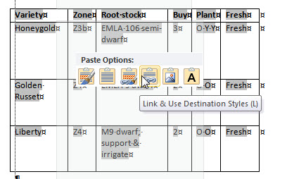 Preview of Word's Paste option to Link to an Excel sheet