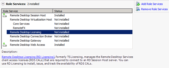 Terminal Server/Role Service