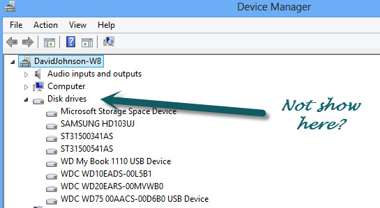 Device Manager Disk Drives