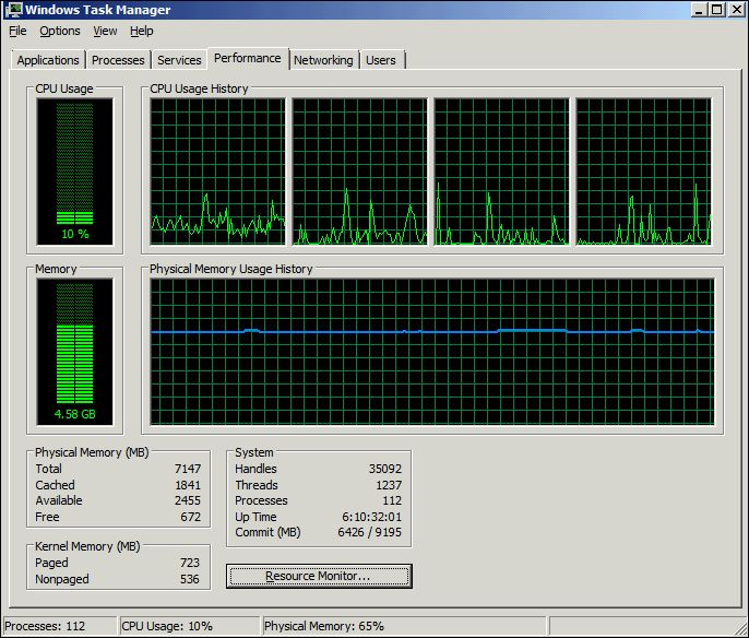 Task Manager performance tab from VM