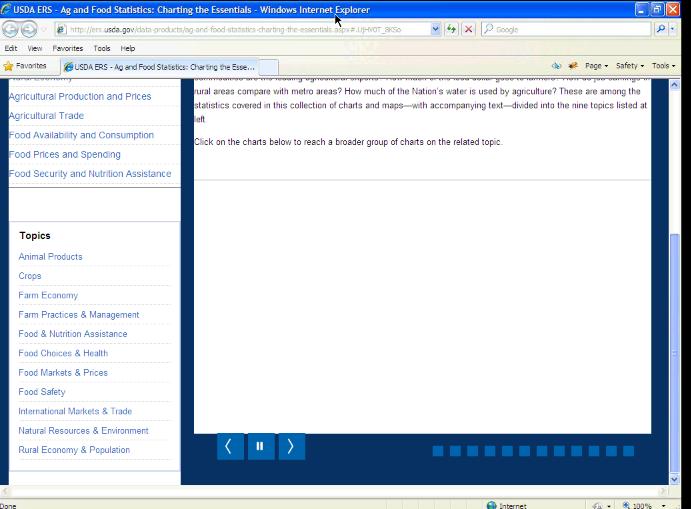 IE 8 screenshot