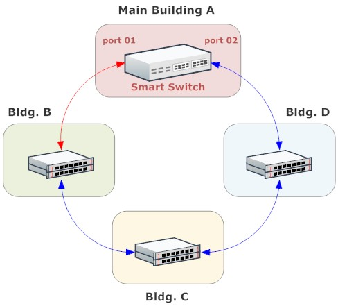 network loop diagram