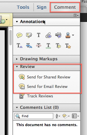 Screenshot of Comment pane with Review expanded