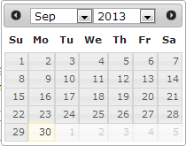 Example of the Year Drop down in Date Picker