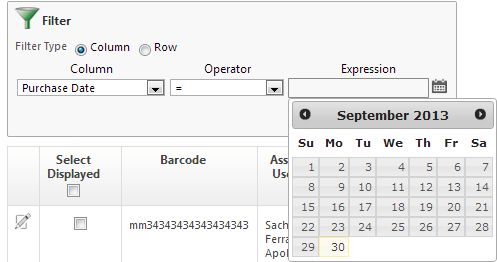 Example of the IR Filter Date Picker without the Year drop down